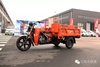 Loncin cheap 110cc/150cc adult cargo china diesel motor tricycle bike/delivery tricycle motorcycle