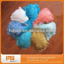 carnival dyed cheap ostrich feathers wholesale