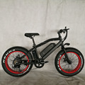20inch 750W fat tire mini mountain electric bicycle