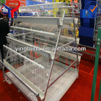 Best 18 years lift span layer poultry chicken cage in china for sale