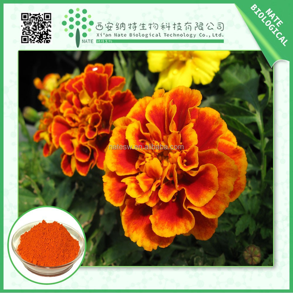 100% pure natural Marigold P.E Extract powder lutein 5% free sample low price