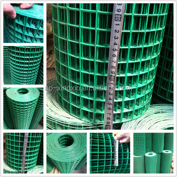 Top quality epoxy/ PVC coated welded wire mesh, welded wire netting (Z - 002)