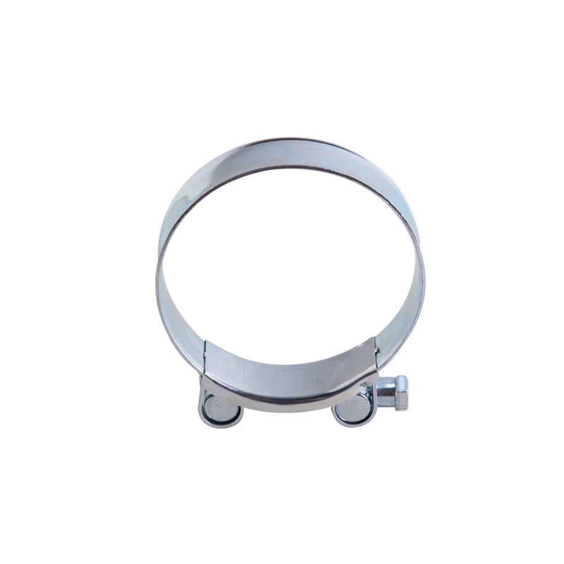 316 stainless steel 4inch pipe clamp with solid nut in China
