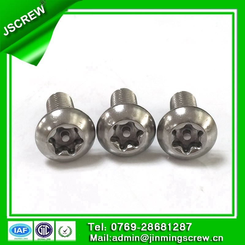 China Screw Factory flower Anti-theft torx head screw