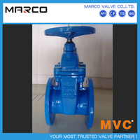 Professional supply ductile iron or cast iron rising or non rising stem din gate valve with german standard