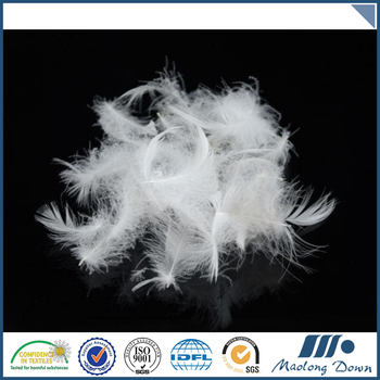 2-4CM Fantastic insulation Washed White goose feathers for sale