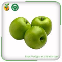 2015 bulk fresh green organic crisp sour apple for sale