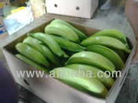GREEN PLANTAINS - BARRAGANETE