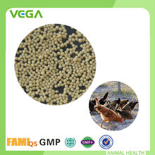 GMP & FAMI-QS Bacitracin Methylene Disalicylate Floating Fish Feed