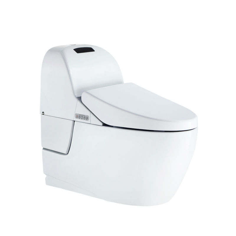 sanitary ware items/sanitary ware fitting/automatic sanitary ware