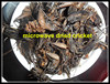 Microwave Dried Crickets For Sale