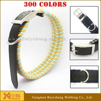 personalized dog collar wholesale dog leash & collar display