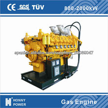 China Domestic Gas Generator Manufacturer