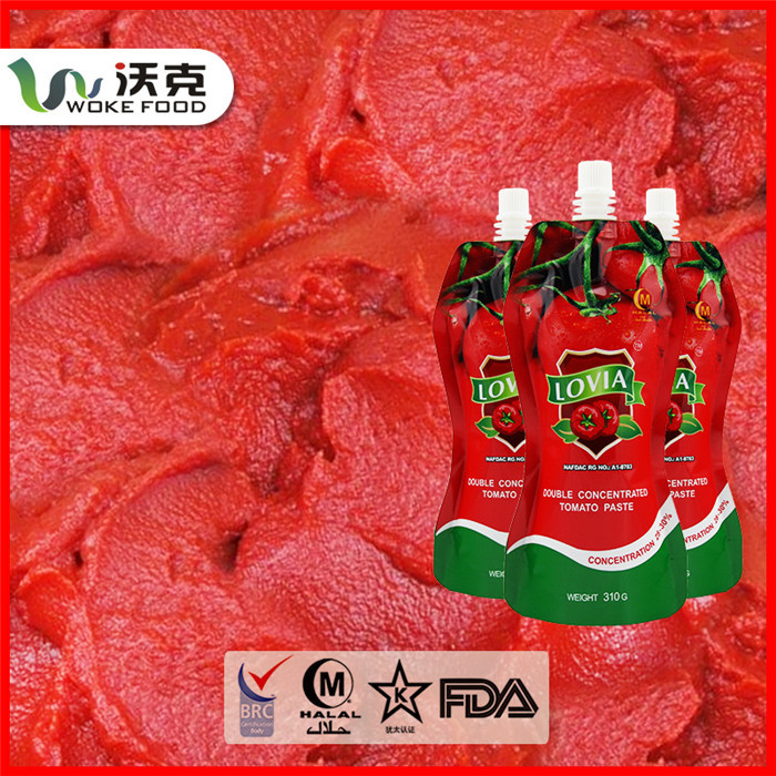 Best Canned/sachet Tomato Paste price food