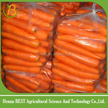 2016 china fresh carrots lowest price/fresh baby carrot