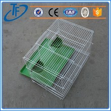 hot sell iron cages , 2 door pet cage with tray