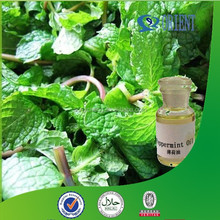 100% Natural Mint Oil