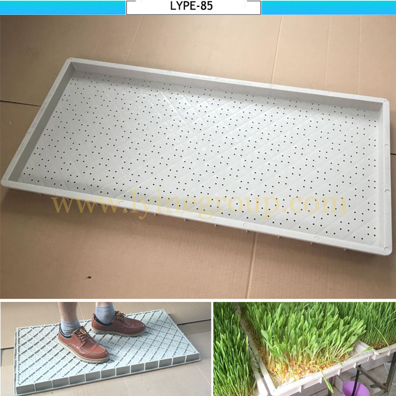 warranty 10 years professional hydroponic growing systems tray with drain hole