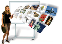 portable interactive whiteboard price touch screen smart board TV Multi Touch