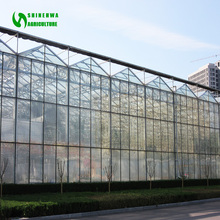 Complete Galvanized Steel Truss Greenhouse sale for tomatoes