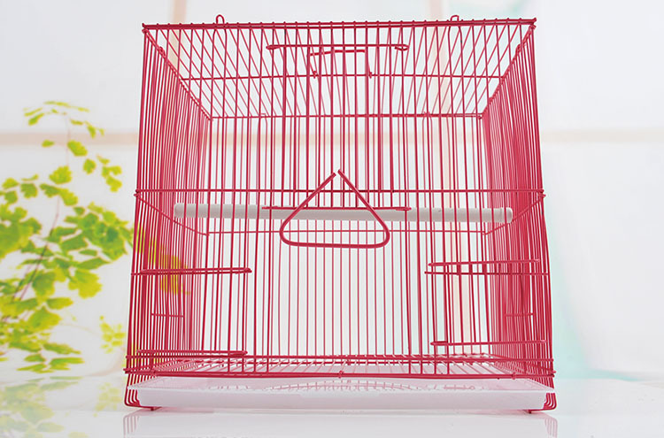 Wholesale Cheap price flat pack wire mesh mini bird cage
