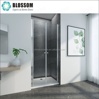 Blossom European EN12150-1 Niche Pivot Hinge Nano Swing Cheap Glass Shower Door