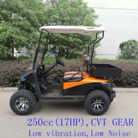 good quality 2 seater gasoline golf cart with cargo bed