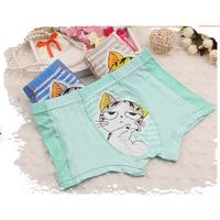 Wholesale 5colors mix different size choice for 2-10years old wear lovely cat printed girls kids underwear