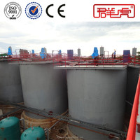 China Manufacturer Gold Cyanide Process Double Impeller Agitation Leaching Plant