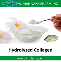 Wuhan Vanz Pharm Supply Hydrolyzed Fish Collagen Powder// Fish Collagen Peptide for Health Food and Cosmetics