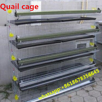 Cage quail /birds quail battery cages High quality cages for laying hens