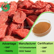Chinese herbal wolfberry extract goji berry extract