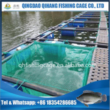 Catfish tilapia fish farming net cages popular in Africa