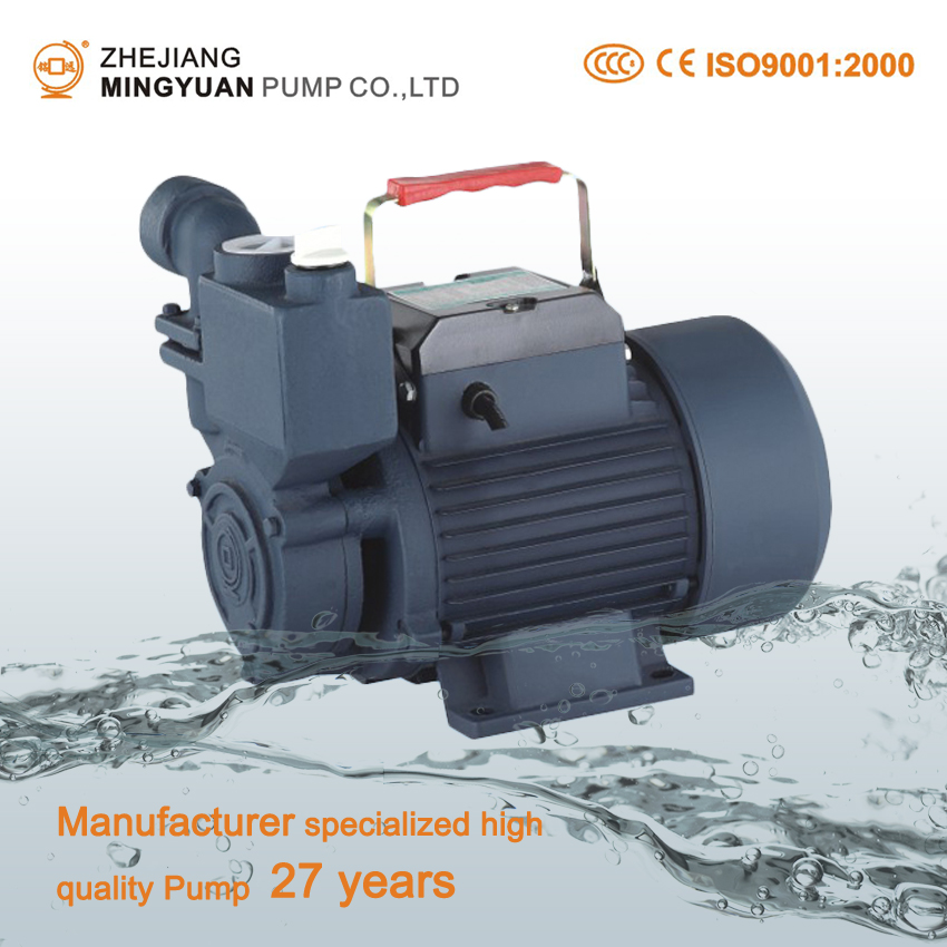 0.5 HP Self-priming Pump Price For Domestic Use Surface Water Pump Manufacturers