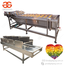 Industrial Date Blueberry Tomato Apple Washing Machine Fruit And Vegetable Washing Line
