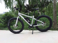 powerful green power electric bike 500 watts classic 5 off road