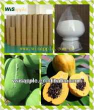 ISO&GMP Papaya seed powder(Papain By TLC)