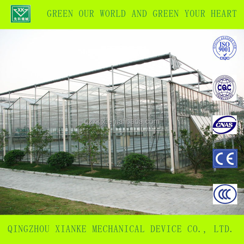 Venlo Glass Multi span Agricultural Greenhouse