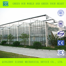 Venlo Glass Multi span Agricultural Greenhouses