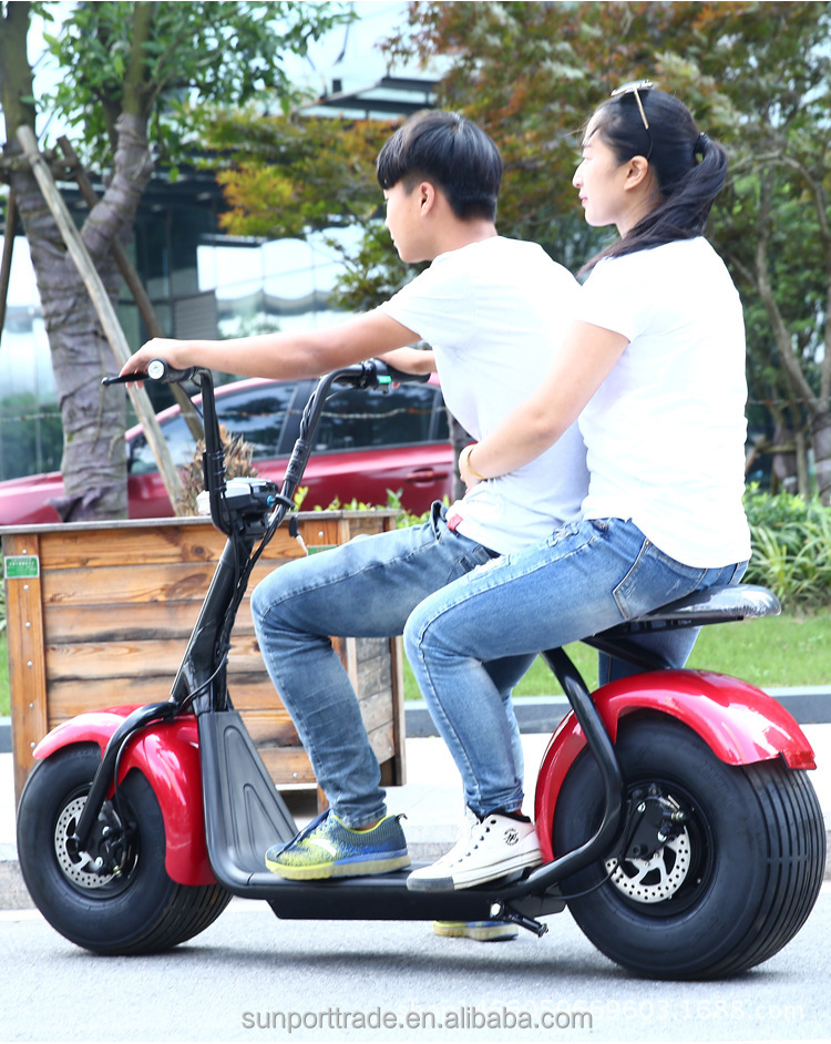 Best Quality functional Fat tire 1000W 20ah Motor 800W citycoco Electric Scooter self balancing handicap