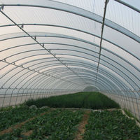 200mic Single Tunnel Greenhouse Covered Film