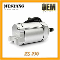 Factory Directly Sale Motorcycle Starter Motor with 9 Teeth for ZS250