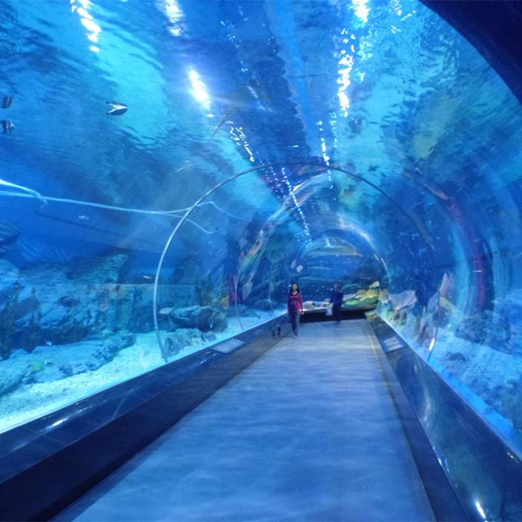 animal fish tank acrylic aquarium tunnel in public aquariums with rh fonovcentar rs