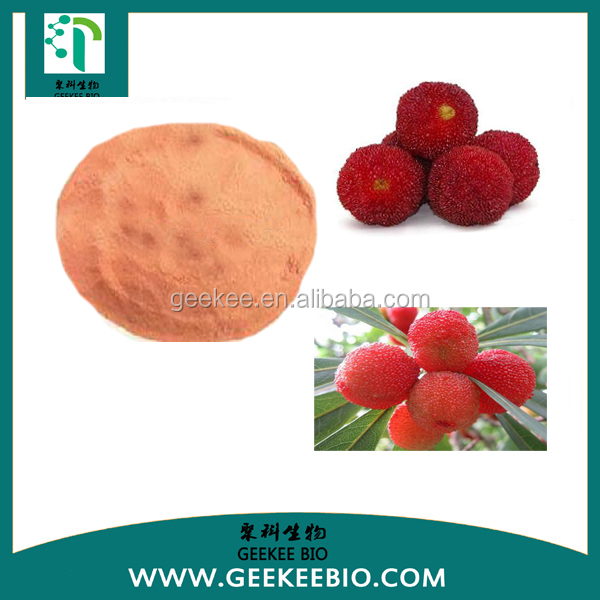 Hot Sale Yumberry Juice Powder with reasonable price