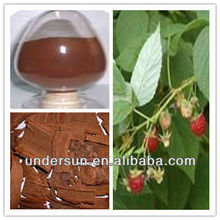Best health drug Pygeum Africanum Extract