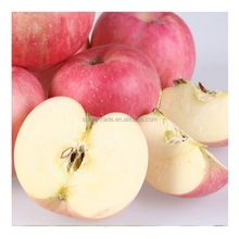 Good taste Fuji apples wholesale fruit prices products