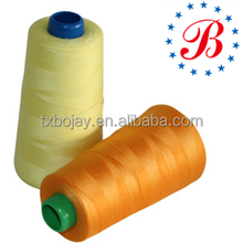 Ne 40/2 3000 Yards Polyester Sewing Threads
