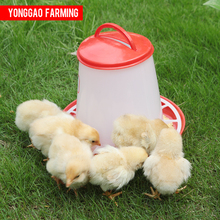 Different size plastic chick feeder for chicken duck