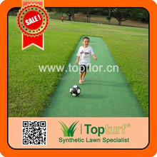 PE 100% Synthetic Lawn Field Green Cricket Pitches