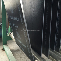 SBS APP modified bitumen waterproof membrane